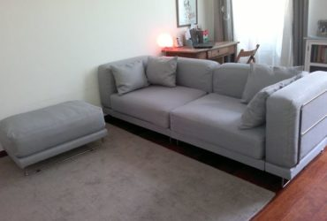 Free Delivery 3 seated Ash sofa