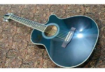 TGM Orginal Pure Acoustic Guitar