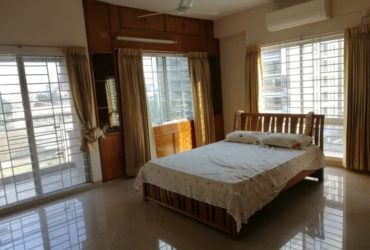 2500 Sft Nicely Full Furnished Apartment Rent In Gulshan