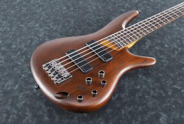 Ibanez SR 505 (5 string bass guitar)